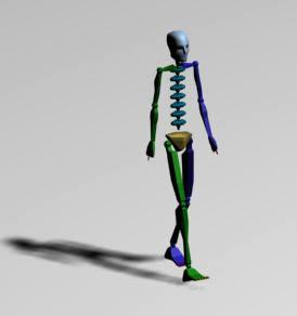 imagen Animacion pasos - esqueleto, en 3d - Personas