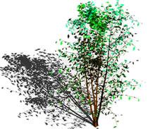 imagen Arbol en 3d, en Arbustos en 3d - Arboles y plantas