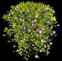 imagen Arbustos en 3d 005, en Arbustos en 3d - Arboles y plantas