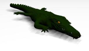imagen Cocodrilo 3d, en Animales 3d - Animales