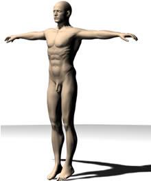 imagen Figura humana - hombre desnudo, en 3d - Personas