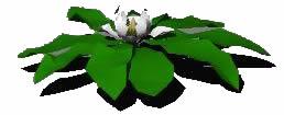 imagen Flor 3d, en Plantas de interior 3d - Arboles y plantas