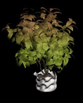 imagen Interior 3d planta, en Arbustos en 3d - Arboles y plantas