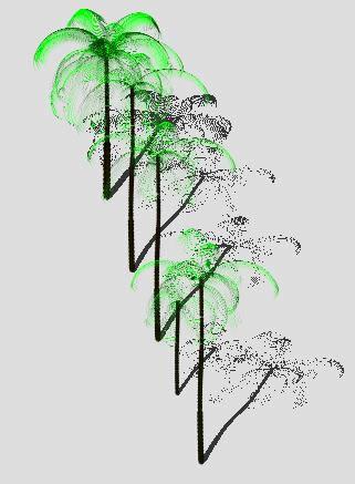 imagen Palma real 3d, en Palmeras en 3d - Arboles y plantas