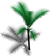 imagen Palmera en 3d, en Palmeras en 3d - Arboles y plantas