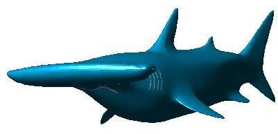 imagen Pez martillo 3d, en Animales 3d - Animales