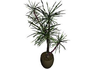 imagen Planta 3d, en Arbustos en 3d - Arboles y plantas