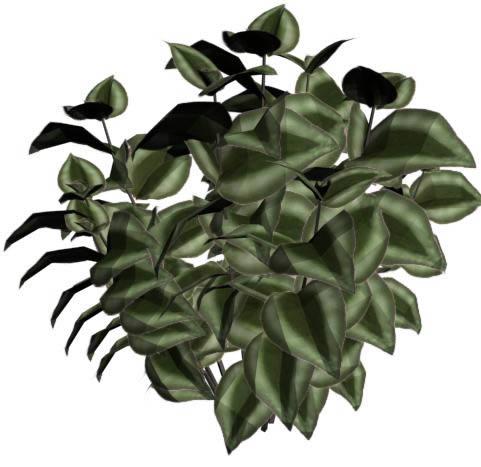 imagen Planta arbusto, en Arboles en 3d - Arboles y plantas