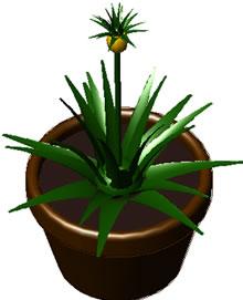 imagen Planta de interior en maceta, en Plantas de interior 3d - Arboles y plantas