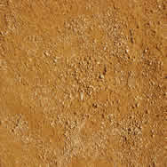imagen Textura de albero de plaza de toros, en Pisos varios - Texturas