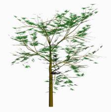 Arbol 09, en Arbustos en 3d – Arboles y plantas