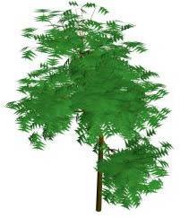 Arbol 3d, en Arboles en 3d – Arboles y plantas