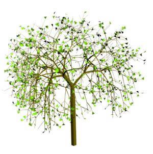 imagen Arbol 3d, en Arbustos en 3d - Arboles y plantas