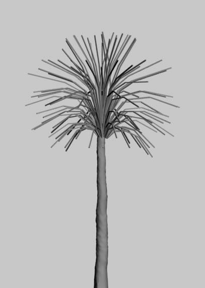 imagen Arbol 3d, en Palmeras en 3d - Arboles y plantas