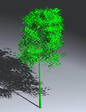 Planos de Arbol aspen 3d, en Arboles en 3d – Arboles y plantas