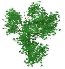 Arbol de gran porte  3d, en Arboles en 3d – Arboles y plantas