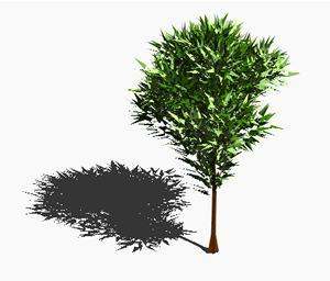 Planos de Arbol en 3d 004, en Arboles en 3d – Arboles y plantas