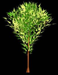 Arbol en 3d 004, en Arboles en 3d – Arboles y plantas