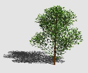 imagen Arbol en 3d 007, en Arboles en 3d - Arboles y plantas