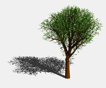 Planos de Arbol en 3d 009, en Arboles en 3d – Arboles y plantas