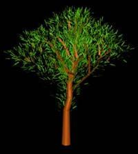 Arbol en 3d 009, en Arboles en 3d – Arboles y plantas