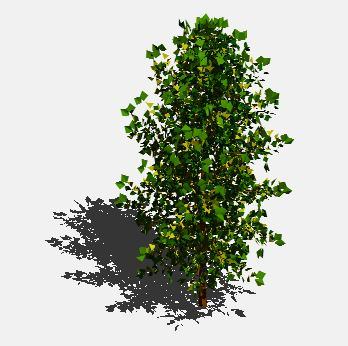Planos de Arbol en 3d 011, en Arboles en 3d – Arboles y plantas
