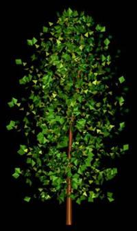 Arbol en 3d 011, en Arboles en 3d – Arboles y plantas