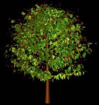 Arbol en 3d 012, en Arboles en 3d – Arboles y plantas