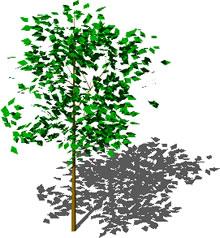 imagen árbol, en Arboles en 3d - Arboles y plantas