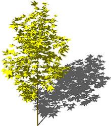 Planos de árbol, en Arboles en 3d – Arboles y plantas