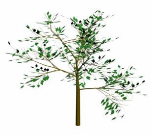 Arbol, en Arboles en 3d – Arboles y plantas