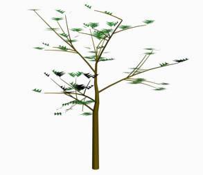imagen Arbol, en Arboles en 3d - Arboles y plantas