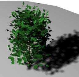 Arbol mediano 3d, en Arboles en 3d – Arboles y plantas