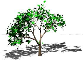 Arbol pequeño en 3d, en Arboles en 3d – Arboles y plantas