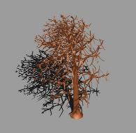 imagen Arbol sin follaje 3d, en Arboles en 3d - Arboles y plantas
