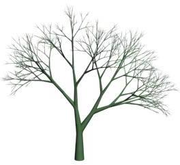 Arbol sin follaje 3d, en Arbustos en 3d – Arboles y plantas