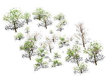 Planos de Arboles 3d, en Arboles en 3d – Arboles y plantas