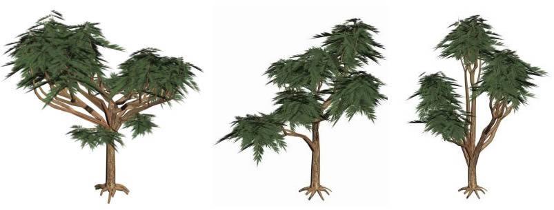 imagen Arboles 3d primeval forest, en Arboles en 3d - Arboles y plantas
