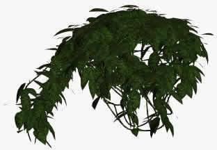 Arbusto 3d, en Arboles en 3d – Arboles y plantas