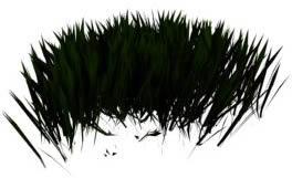 imagen Arbustos 3d, en Arbustos en 3d - Arboles y plantas
