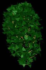 Planos de Arbustos en 3d 003, en Arbustos en 3d – Arboles y plantas