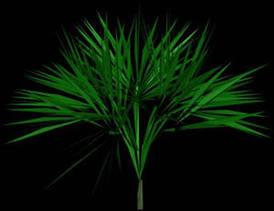 Planos de Arbustos en 3d 009, en Arbustos en 3d – Arboles y plantas
