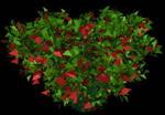 imagen Arbustos en 3d 011, en Arbustos en 3d - Arboles y plantas