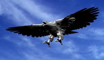 Ave 3d condor, en Animales 3d – Animales