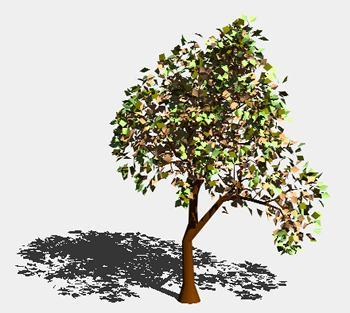 Planos de Conifera 3d, en Coníferas en 3d – Arboles y plantas