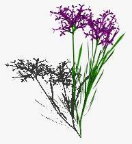 imagen Flor, en Arbustos en 3d - Arboles y plantas