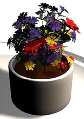 imagen Flores  de interior, en Plantas de interior 3d - Arboles y plantas