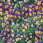 Flores, en Follajes y vegetales – Texturas