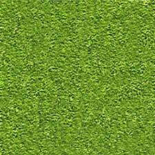 imagen Grama/grass, en Follajes y vegetales - Texturas