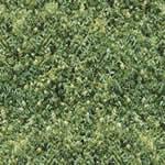 Gramilla, en Follajes y vegetales – Texturas